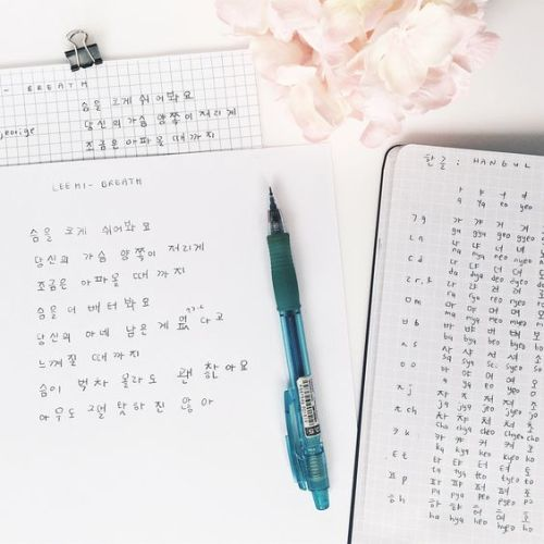 online korean tutor